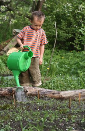 Little boy watering