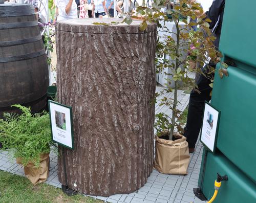 Tree-stump-waterbutt