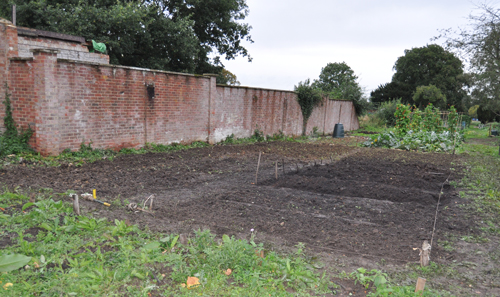 Allotment1000afterdigging