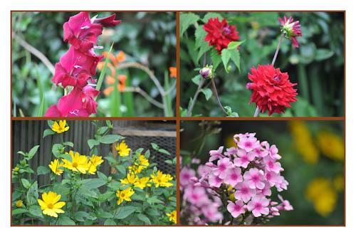 GBBDaug12brightcolours