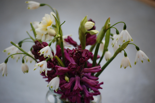 HyacinthWoodstock&leucojum