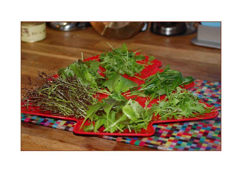 Christmas salad tray-2
