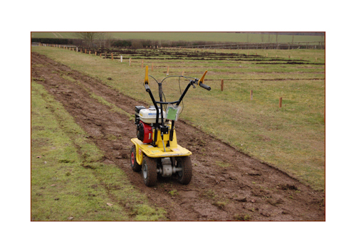 Turfcutter perrennial bed-1