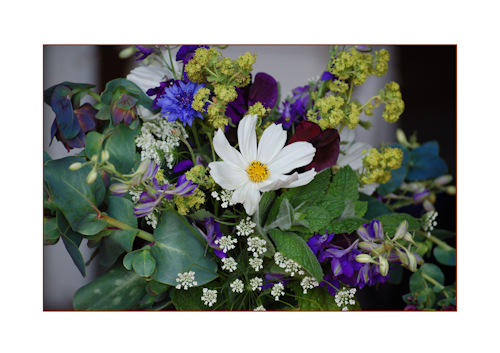 Posy with cerinthe-2