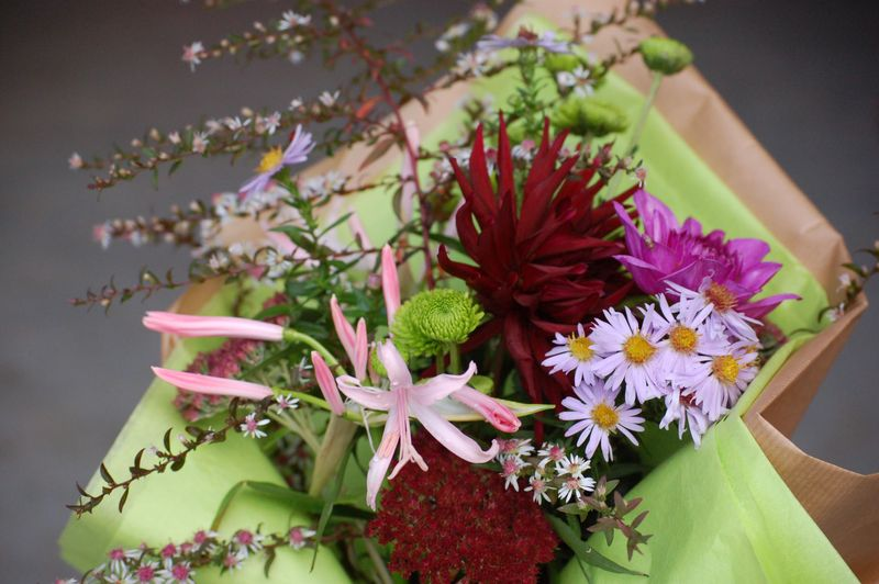 Froggy bouquet (1 of 1)