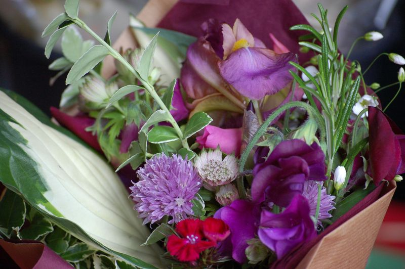 Wrapped posy (1 of 1)