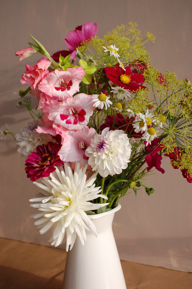 Seasonal flower alliance aug14 (1 of 1)