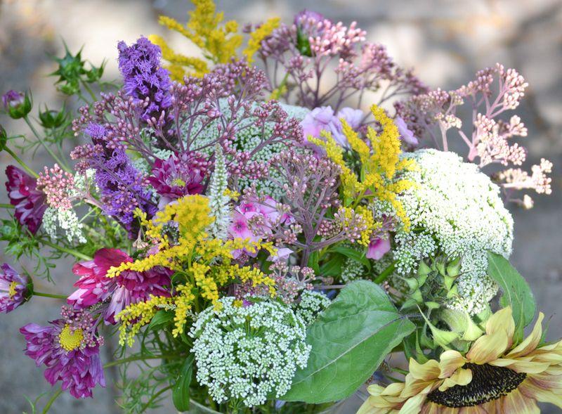 Seasonal flower alliance august 18th