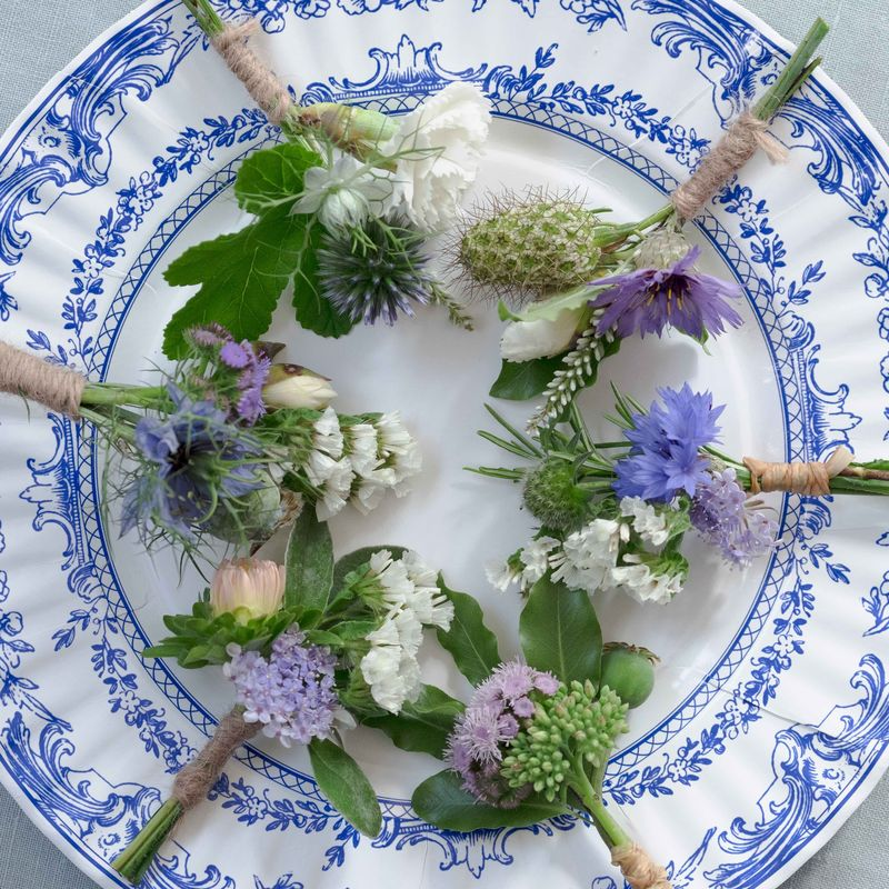 Plate of buttonholes