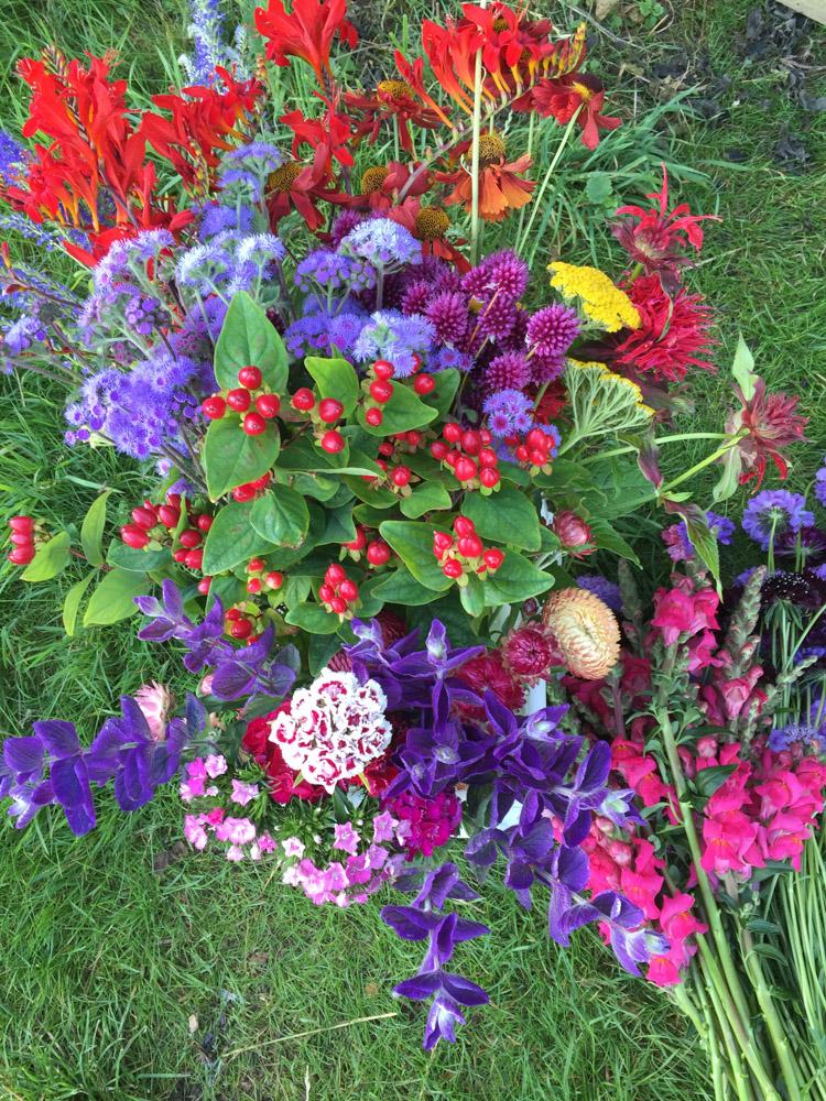 Bright flowers for jam jars