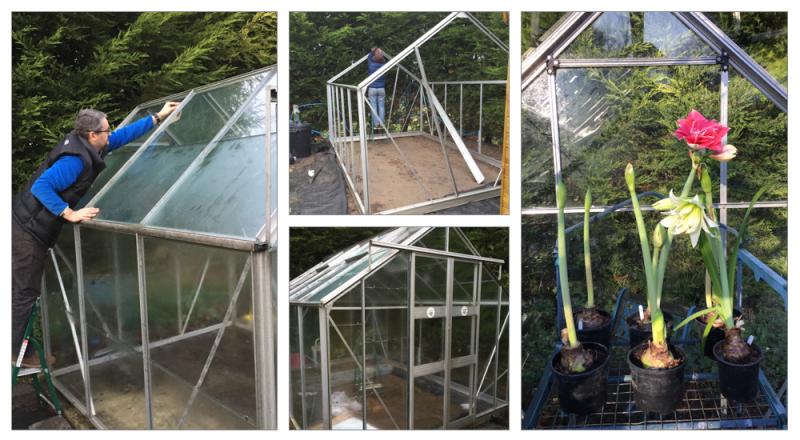 Greenhouse montage