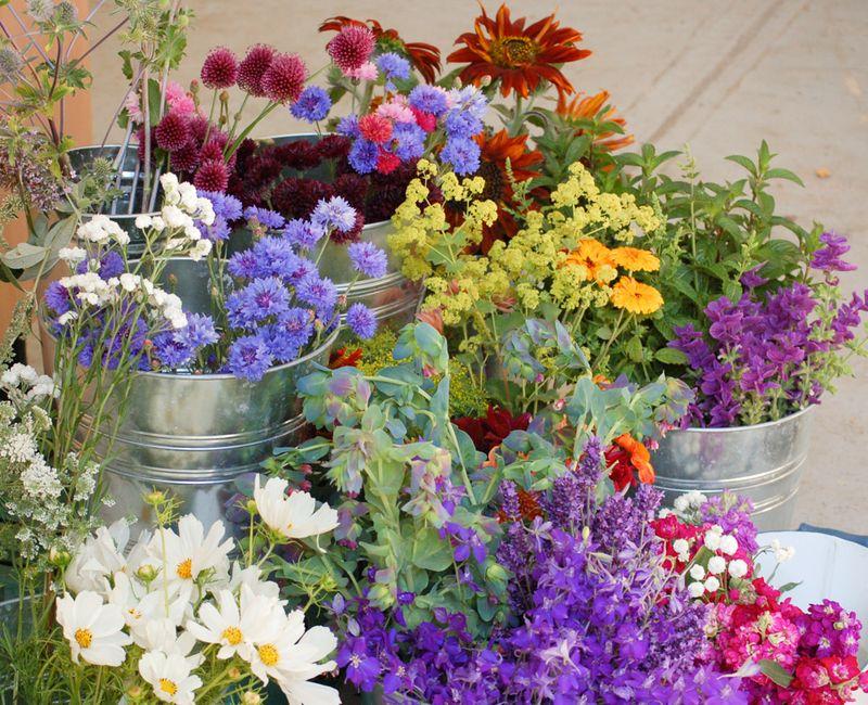 Flower sales display (1 of 1)