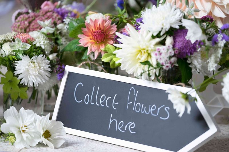 Collect flower here